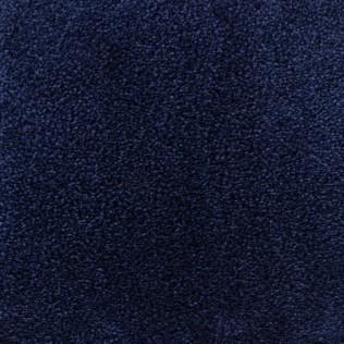 C765 - Kungsblå