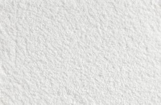 O411 - Snowberry