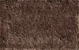 O428 - Hazelnut