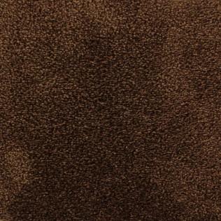 C728 - Björnbrun