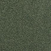 W275 - Grass.jpg