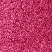 C4048 - Flamingo.jpg