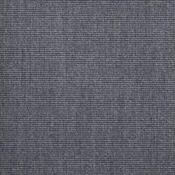 X365 - Hav