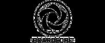 boardcore-bodyboards.png