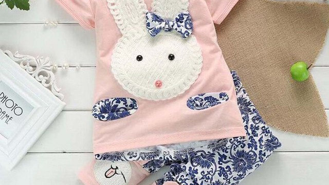 Baby Girls Bunny Embroidered Short Sleeve Suit Set