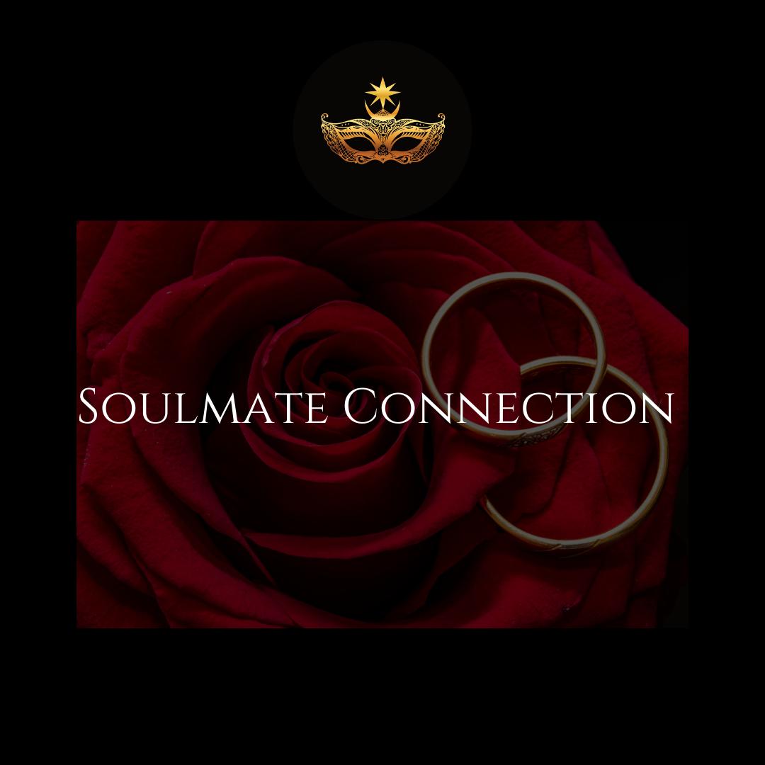 Soul Mate Report