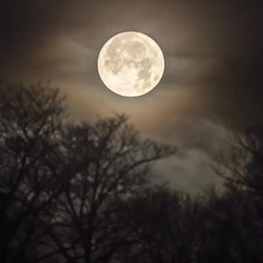 Full Moon Manifest