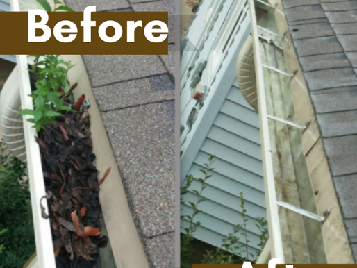 Why Do I Need To Clean My Gutters in the Spring?