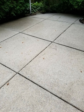 Clean driveway in Grosse Pointe