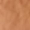 snappap bruin.png