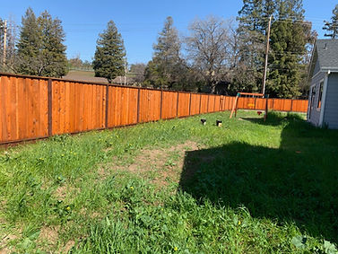 Can Painting My Fence Make It Last Longer?