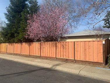 How Can You Keep Your Wood Fence From Rotting?