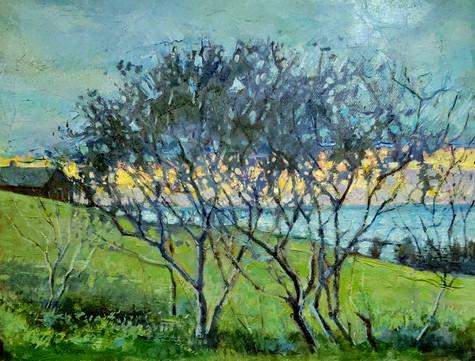 Morning Break, Oil on Canvas, 11 x 14