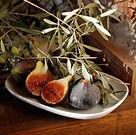 fig & olive.JPG