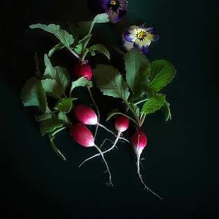 Christine Acebo, And Then I Ate Them, Photograph