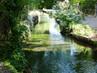 canal des Moulins (10).JPG