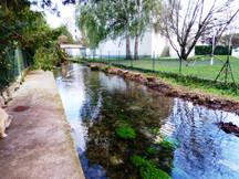 canal des Moulins (1).JPG