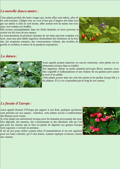 revue5_page3.jpg