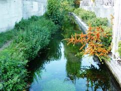 canal des Moulins (20).JPG