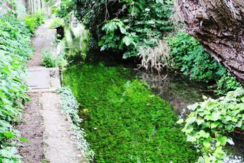 canal des moulins (5).JPG