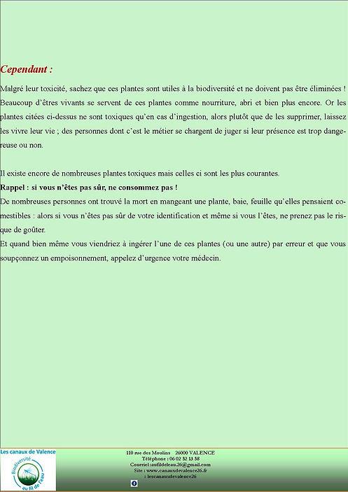 revue5_page4.jpg