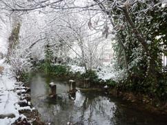 canal des Moulins (16).JPG