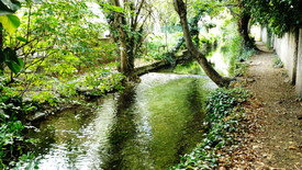 canal des Moulins (22).JPG