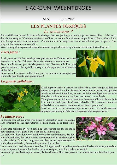 revue5_page1.jpg