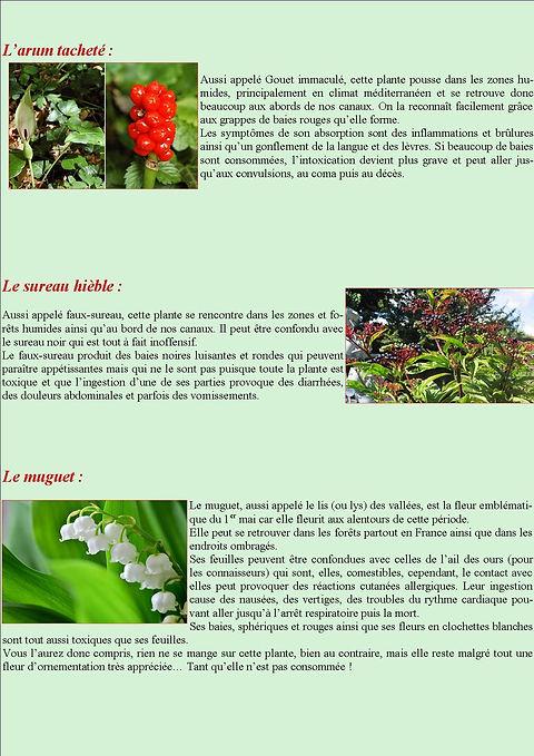 revue5_page2.jpg