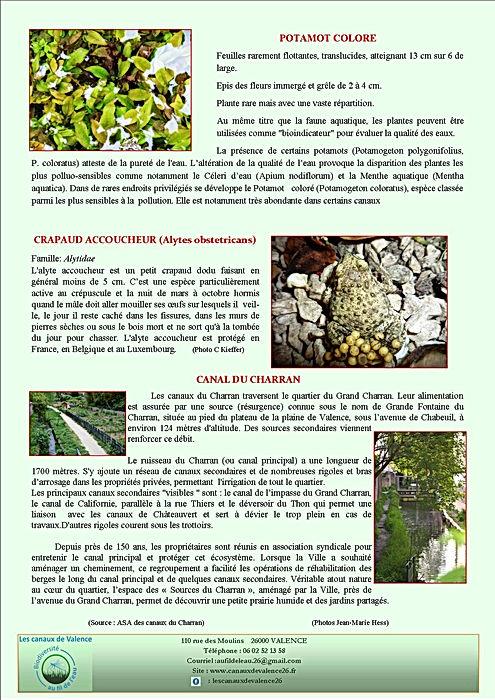 revue3_page2.jpg
