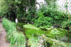 canal des moulins (4).JPG