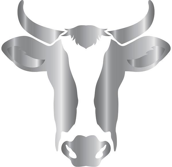 Cabeza Vaca Plata.jpg