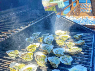 Pocomo Meadow Oysters with a charred scallion butter