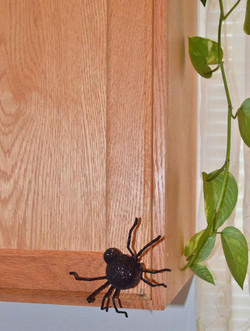 Spiders for scariness