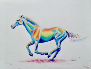 'Rainbow Horse'