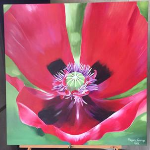 'Poppy'