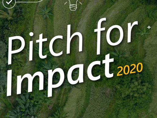 Pitch for Impact 2020