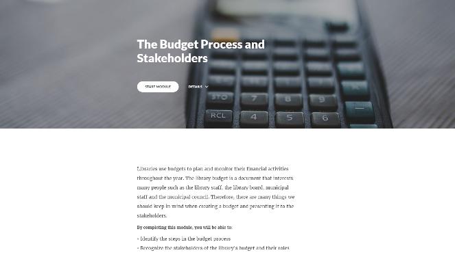 Budget Rise Portfolio Cover_edited.png