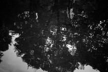 August 4 - Water-2.jpg