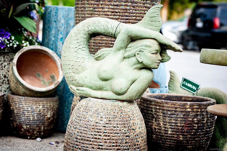 chg mermaid.JPG