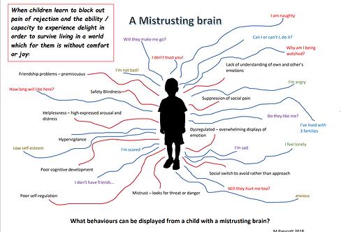 A mistrusting Brain worksheet