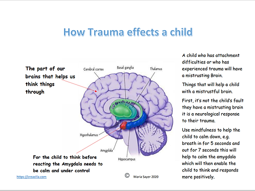 The Mistrusting Brain Diagram