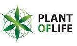 Plant_Of_Life_CBD_Hash_Linda_Seeds..png