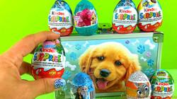 Kinder Egg Surprises & Zaini Egg Surprises | Didi Dog Supply Box with Egg Surprises Kinder & Zaini
