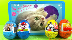 Opening 15 Egg Surprises | Poku Cat Supply Box with Kinder & Zaini Egg Surprises Full Box