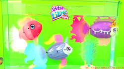 Little Live Pets Fish | 2 New Fishes Magically Swims and Feeds | Little Live Pets Lil Dippers