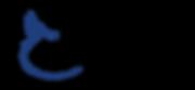 ins logo.png