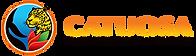 Camara de Turismo de Osa - Logo.png