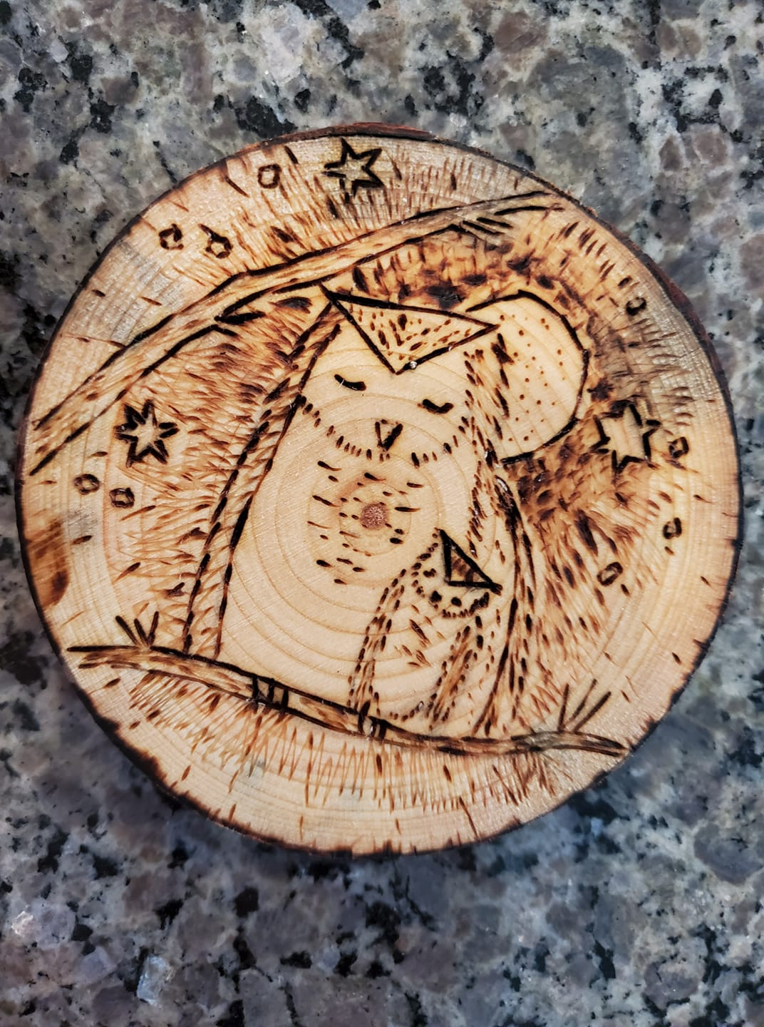Owl and young wood burned wall décor