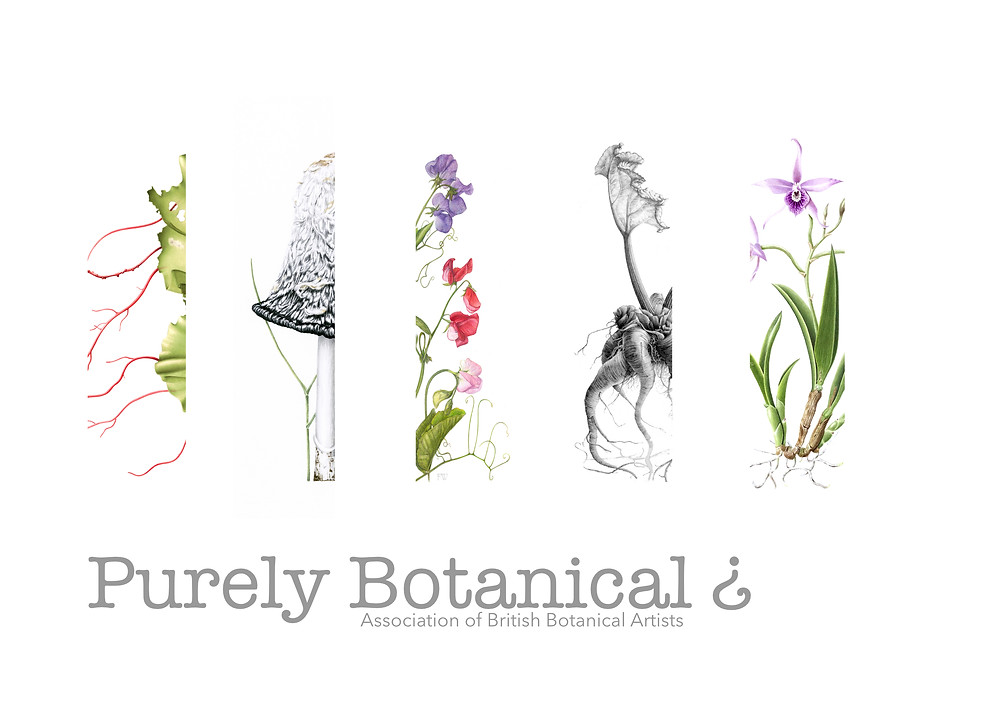 Purely Botanical? Exhibition